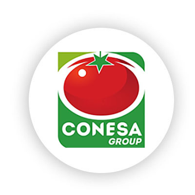 logo Conesa Group